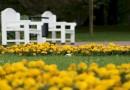 Reedel avatakse viies rahvusvaheline Tallinna lillefestival 2013 Tornide väljaku pargis