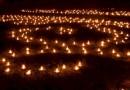 Valgus kõnnib Kadriorus 2013